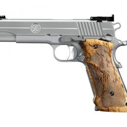 1911_stainless_super_target_2